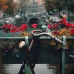 Come affittare una bici in Olanda e che cosa farne