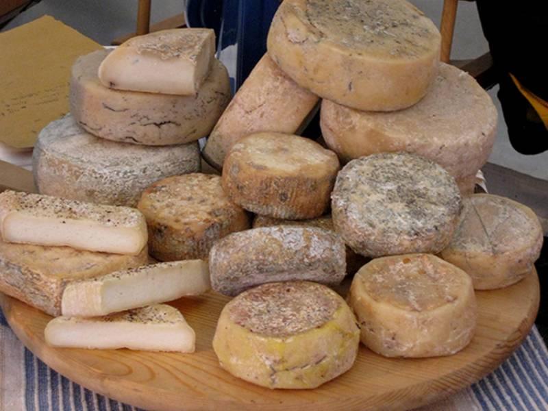 formaggio caprino - sabrinabarbante - in my suitcase