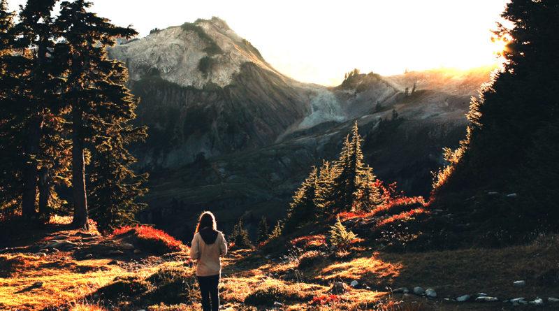 godersi la montagna starter pack